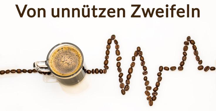 Von_unnuetzen_Zweifeln-2317201_736